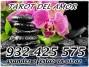 Te brindo precio, calidad, garantía  llámanos al 932 425 575 visas 6€20 y  8€30 minutos