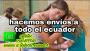 Venta de pastillas para abortar venta en PASAJE 0981477743