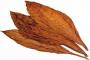 Hoja Natural Premium Lemon/Medium/Burley