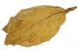 Hoja de tabaco Natural Virginia Lemon/ Medium/ Negro Burley 633438735
