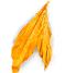 Variedades Virginia Premium- Hoja de Tabaco
